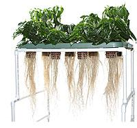 A power failure in an aeroponic system could mean big trouble for your plants.