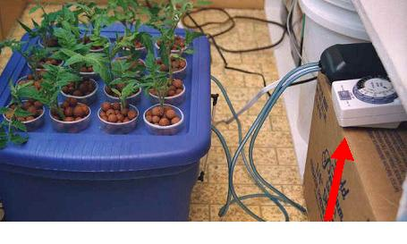 Easy To Make Homemade Aeroponics Cloner
