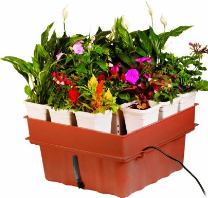 This is a low cost, low maintenance system that can easily fill a closet with flowers. It's perfect for a one-light garden