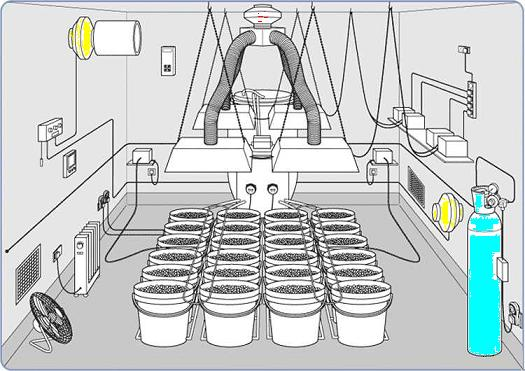 6 x 8 hydroponic growroom setup for Grow room design plans