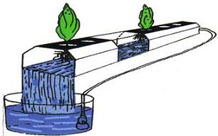 Homemade NFT channels can be made very cheaply from 4 inch PVC, gutters, or square PVC fence posts.