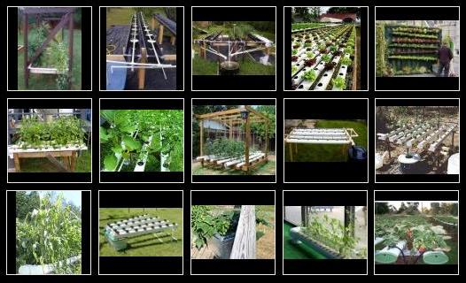 Outdoor Hydroponic And Aeroponic Systems